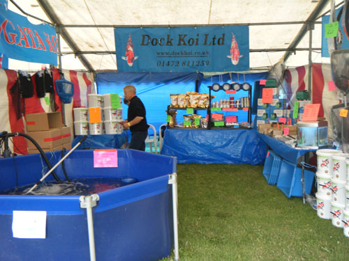Koi show venues 2018 from dock koi ltd for Koi pool opening times