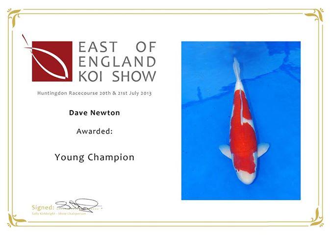 KOI SHOWS 2013