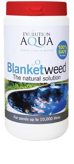 Blanketweed 800gm